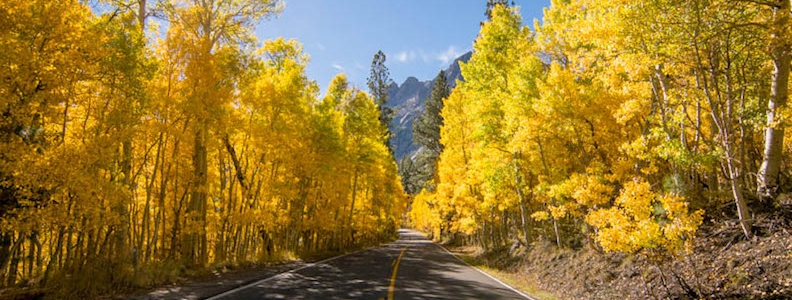 Schomp MINI's Top Five Places to View Colorado's Fall Foliage